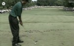 Video 8.6: Tiger Woods making a golf shot